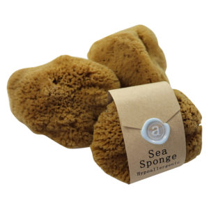 Anoint Sea Sponges | Bath